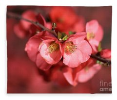 Flowering Quince Fleece Blanket