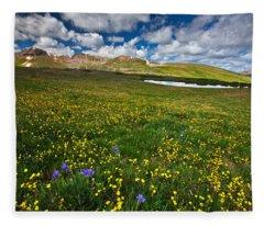 Flowers On The Divide Fleece Blanket