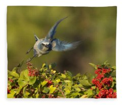 Flying Florida Scrub Jay Photo Fleece Blanket