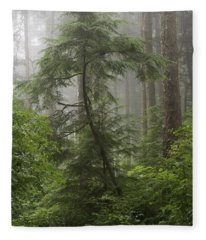 Foggy Woods Fleece Blanket