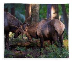 Forest Battle Fleece Blanket