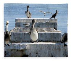 Pelican Friends Fleece Blanket