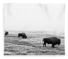 Frosty Bison Fleece Blanket