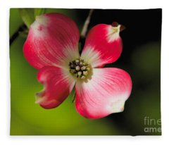 Fruit Tree Flower Fleece Blanket