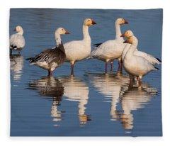 Gaggle Of Snow Geese Reflected Fleece Blanket