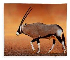 Gemsbok On Desert Plains At Sunset Fleece Blanket