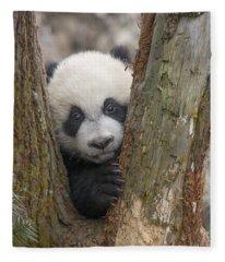 Giant Panda Cub Bifengxia Panda Base Fleece Blanket