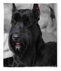 Giant Schnauzer Fleece Blanket