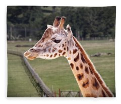 Giraffe 02 Fleece Blanket