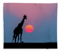 Giraffe At Sunset Chobe Np Botswana Fleece Blanket