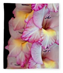 Gladiolus Flower Pink And White Art Prints Fleece Blanket