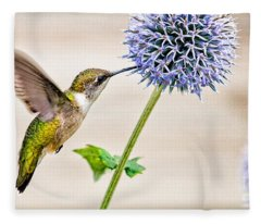 Globe Thistle Hummer Fleece Blanket