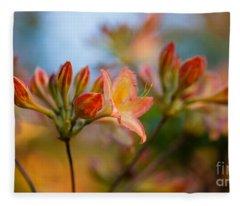 Glorious Orange Blooms Fleece Blanket