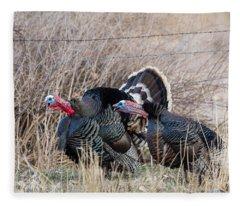 Gobbling Turkeys Fleece Blanket