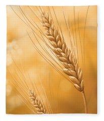 Gold Grain Fleece Blanket
