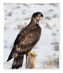 Golden Eagle On Fencepost Fleece Blanket