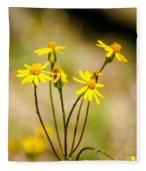 Golden Ragwort Fleece Blanket