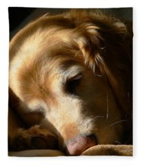Golden Retriever Dog Sleeping In The Morning Light  Fleece Blanket