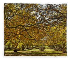 Golden Walnut Orchard Fleece Blanket