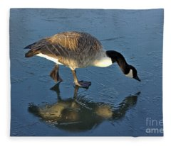 Goose On Ice Fleece Blanket