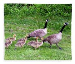 Goose Step Fleece Blanket