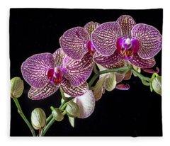 Gorgeous Orchids Fleece Blanket