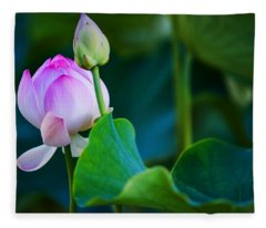 Graceful Lotus. Pamplemousses Botanical Garden. Mauritius Fleece Blanket