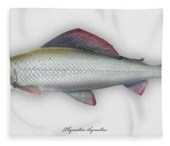 Grayling - Thymallus Thymallus - Ombre Commun - Harjus - Flyfishing - Trout Waters - Trout Creek Fleece Blanket