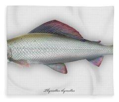 Grayling - Thymallus Thymallus - Ombre Commun - Harjus - Flyfishing - Trout Waters - Trout Creek Fleece Blanket