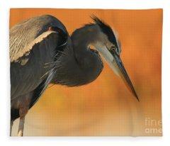Great Blue Heron Focus Fleece Blanket