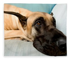 Great Dane Dog On Sofa Fleece Blanket