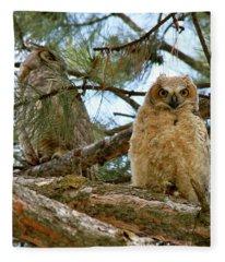 Great Horned Owls Fleece Blanket