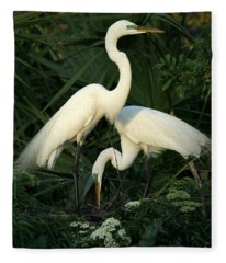 Great White Egret Mates Fleece Blanket