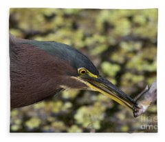 Green Heron Fishing Fleece Blanket