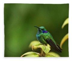 Green Violetear Hummingbird Fleece Blanket