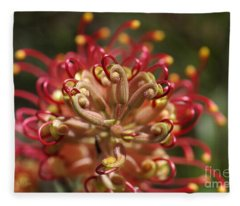 Grevillea Superb Australian Flora Fleece Blanket