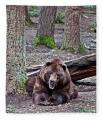 Grizzly Bear Growling In Forest Fleece Blanket