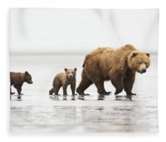 Grizzly Bear Mother And Cubs Lake Clark Fleece Blanket