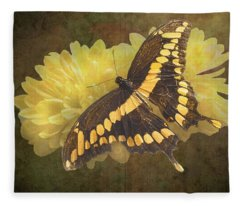 Grunge Giant Swallowtail-1 Fleece Blanket