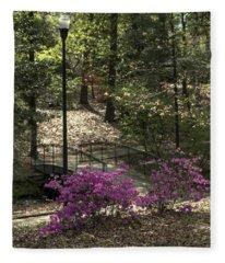 Guignard Park-2 Fleece Blanket