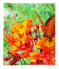Gulf Fritillary Butterfly On Pride Of Barbados Fleece Blanket