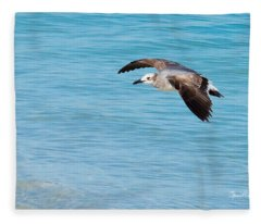 Gull At Lido Beach IIi Fleece Blanket
