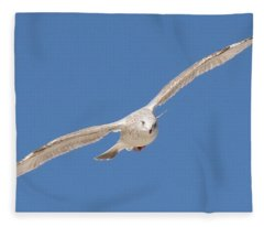 Gull In Flight  Fleece Blanket