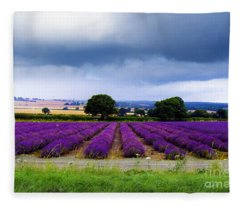 Hampshire Lavender Field Fleece Blanket