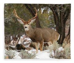 Handsome Buck Fleece Blanket