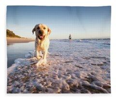 Happy Dog Ona Beach Fleece Blanket