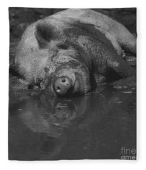 Happy Pig Fleece Blanket