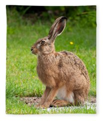 Hare Profile Fleece Blanket