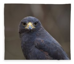 Harris Hawk Fleece Blanket