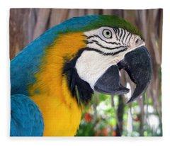Harvey The Parrot 2 Fleece Blanket
